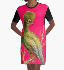 Touraco - Bird HD vintage image from encyclopedia number 18 Graphic T-Shirt Dress