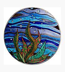Kelp Bubbles (Color) Photographic Print