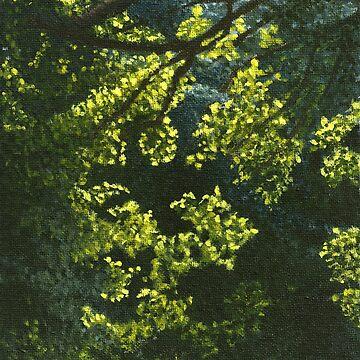 Backlit Leaves by LindaMarques