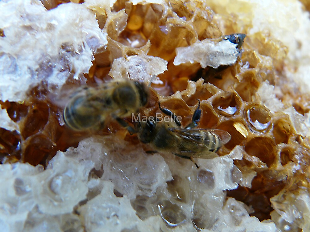 Bees on a Honeycomb by MaeBelle