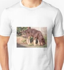 bloodhound liver and tan puppy T-Shirt