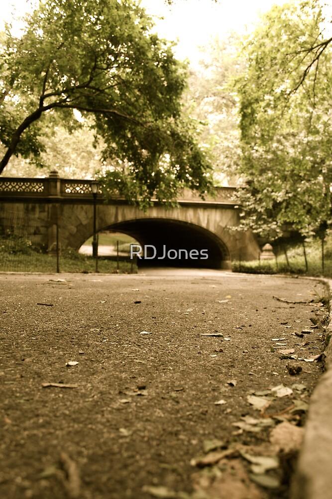 A Walk in the Park by RDJones