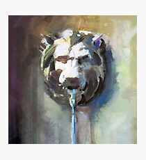 Lion Head Fountain Photographic Print