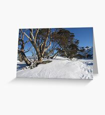 Snow Gums Greeting Card
