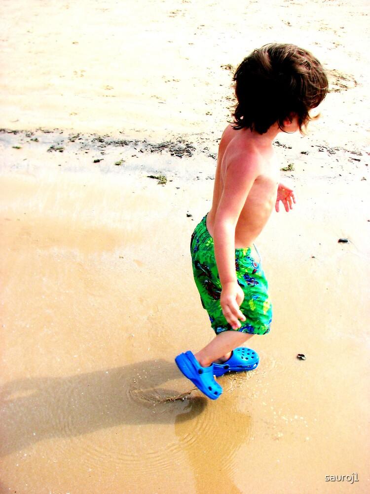 day at the beach by sauroj1
