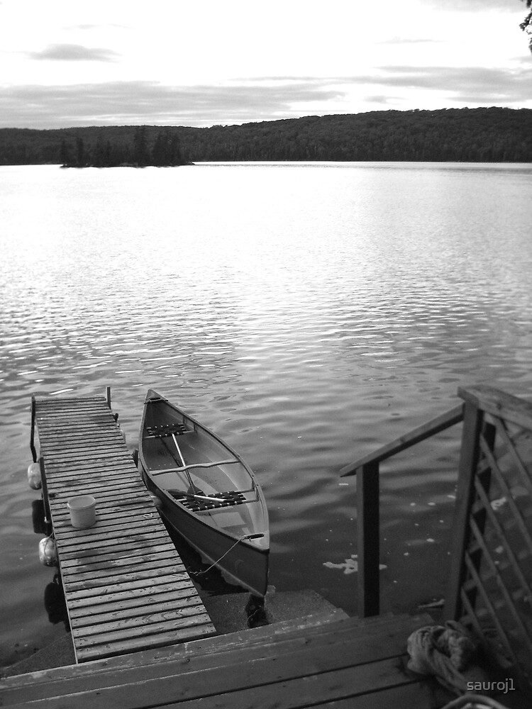 cottage canoe by sauroj1