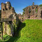 Grosmont Castle, Wales by hans p olsen