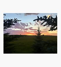 Ranch Sunset in Summer Photographic Print