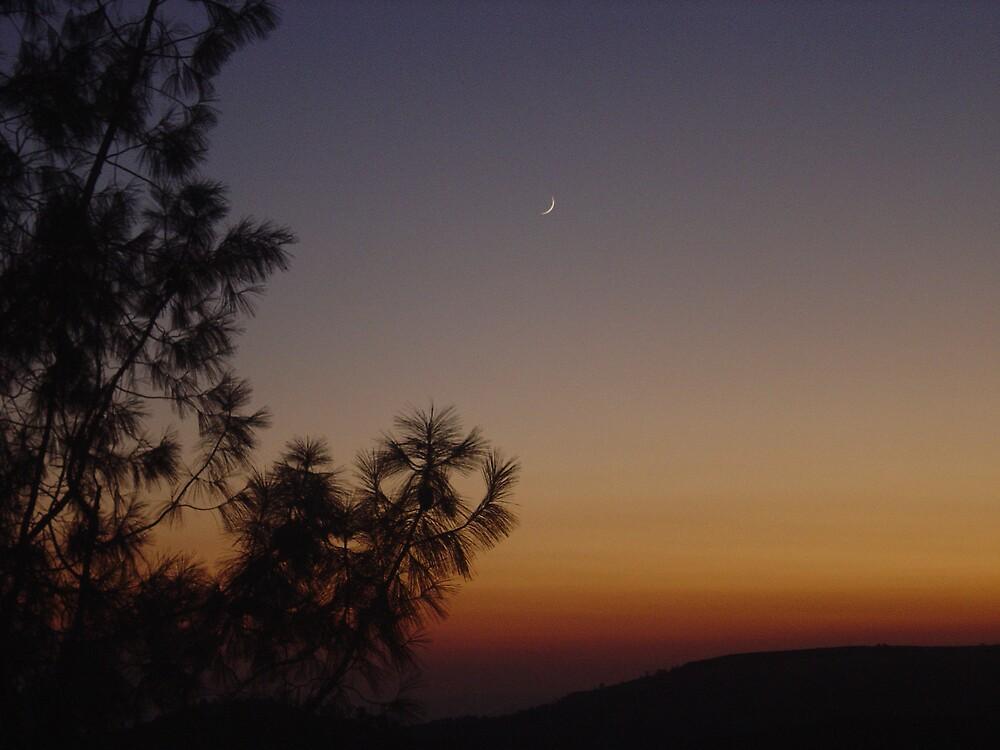 Nightfall by Jerry Stewart