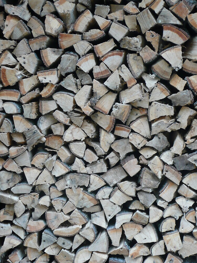 Wood Pile Waiting for Winter by phil777