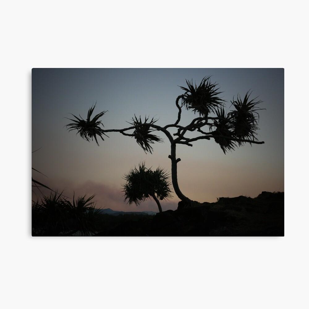 Dark Wind Canvas Print