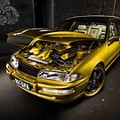 Paul Romeo's Holden VS Caprice by HoskingInd