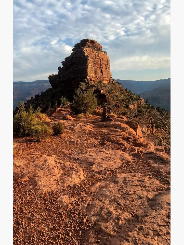 Panorama del Gran Cañón de oakleydo