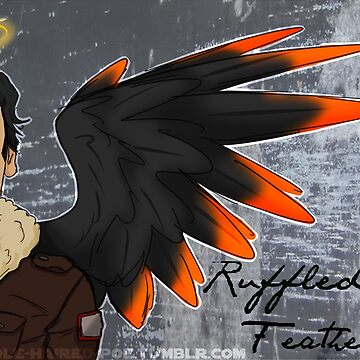 Ruffled Feathers Cover by CanidSpirit