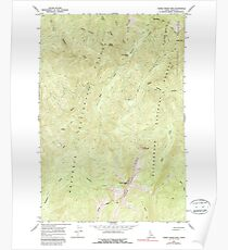 USGS TOPO Map Idaho ID Three Prong Mountain 238493 1966 24000 Poster