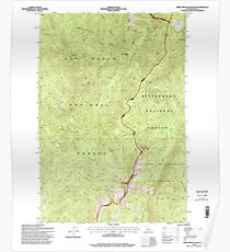 USGS TOPO Map Idaho ID Three Prong Mountain 238495 1995 24000 Poster