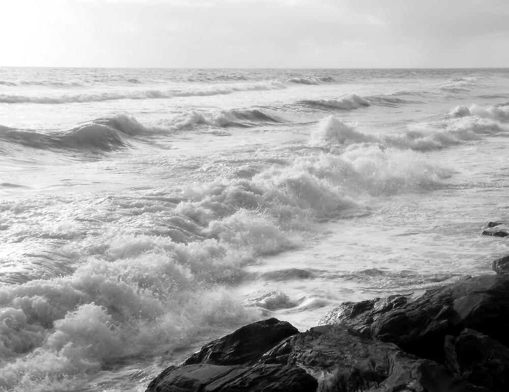 Wild Brighton by Kablwerk