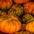 Pumpkin still life by Celeste Mookherjee