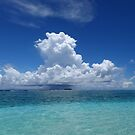 Seabirds over Egum Atoll by Reef Ecoimages