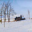 Winter day by Ana Belaj
