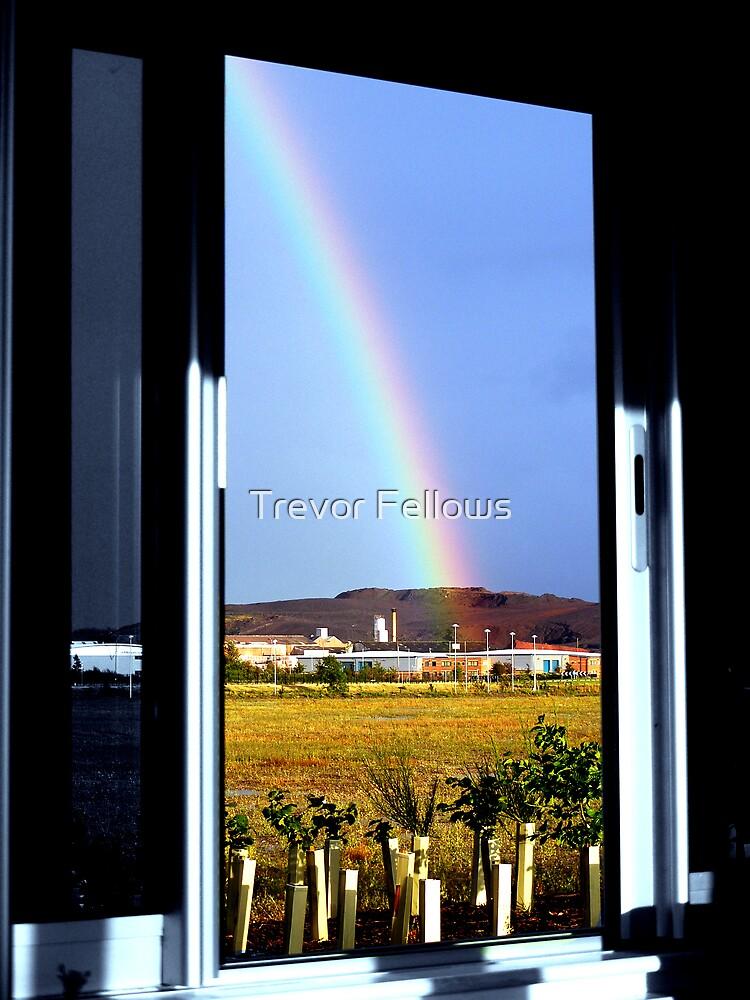 The rainbow by Trevor Fellows