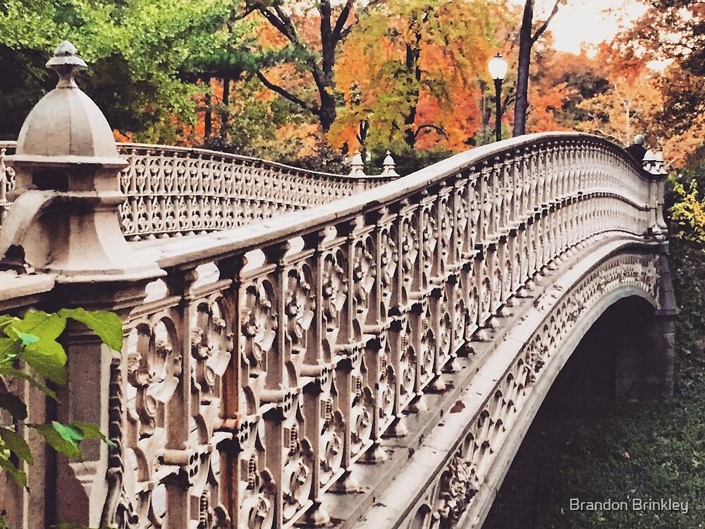 Autumn Bridges by BrandonBrinkley
