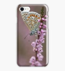 Common Blue butterfly  iPhone Case/Skin