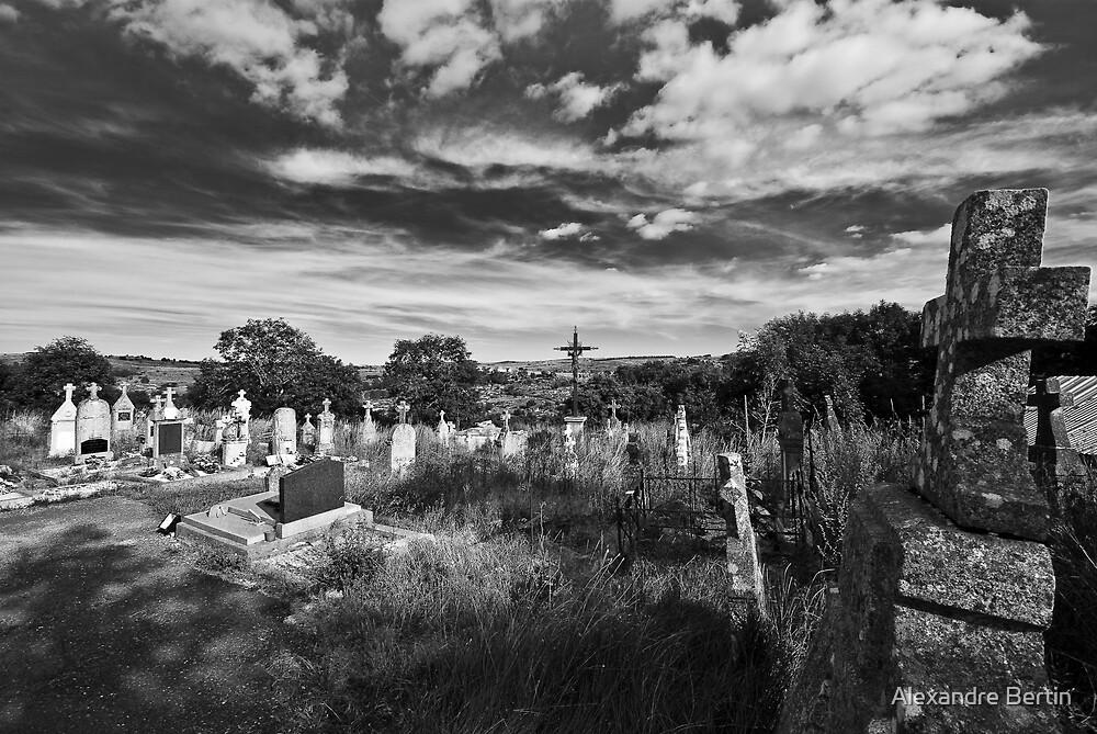 Desperate Cemetery by Alexandre Bertin