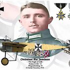 Oberleutnant Max Immelmann by AH-Aviation-Art