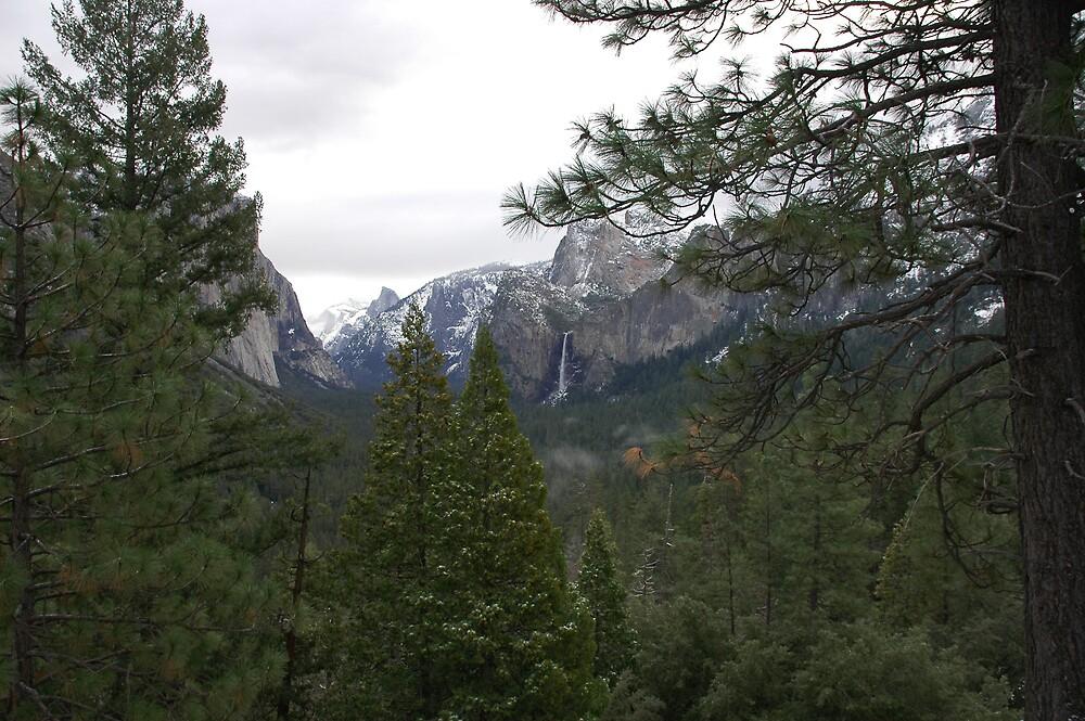 Yosemite Valley by Kozmo