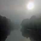Sun in Mist by Sarah McKoy