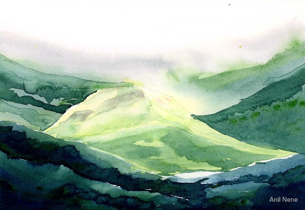Sunlit hill by Anil Nene