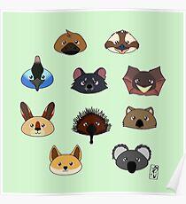 Just a bunch of cute australian animals - Australian animal design Poster