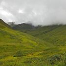 Hatcher Pass by Gary L   Suddath