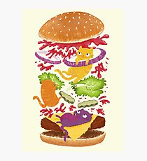 Cat Burger Photographic Print