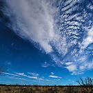 Post Texas Sky and Clouds2 by StonePics