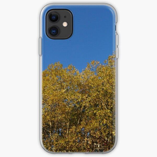 Golden Birches in Autumn iPhone Soft Case