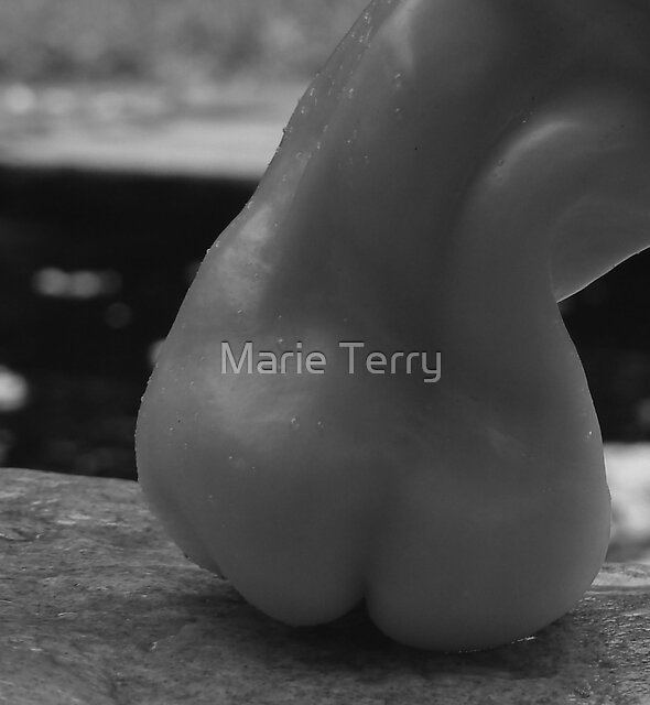 Nude by the Pond? by Marie Terry