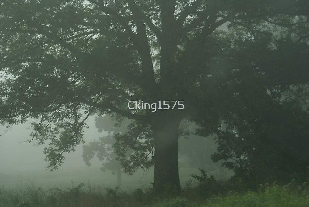 Fog 1 by Cking1575