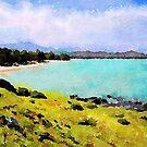 Kailua Beach from Afar by Angela Treat Lyon