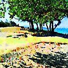 The Hill at Kailua Beach by Angela Treat Lyon