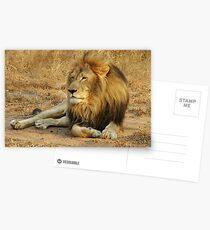 His Royal Highness Postcards