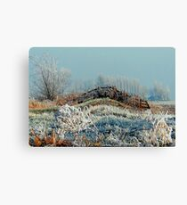 FROZEN FENCE Canvas Print
