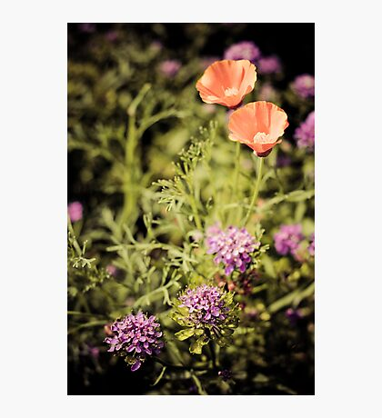 flowery sickle Photographic Print