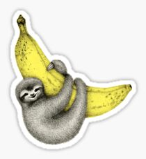 Bananas about you - on pink Sticker