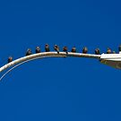Lamppost #15 by David Librach - DL Photography -