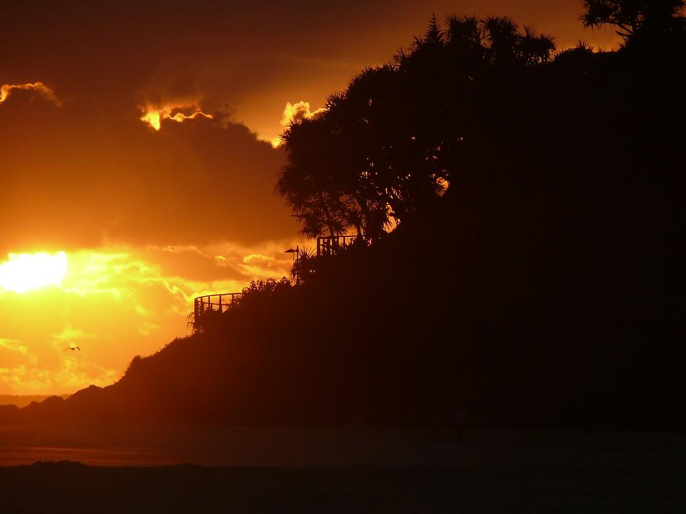 Sunrise Silhouette  by Tim Everding