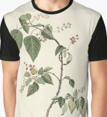 Branch currants, Alida Withoos, 1670 - 1715 Graphic T-Shirt