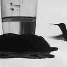 Flight of the Hummingbird by rosaliemcm
