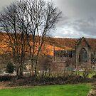 Tintern Abbey by missmoneypenny